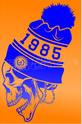 1985 Touque Skull Decal Sticker DM