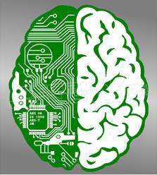 Brain Circuit Board Tech Savy Decal Sticker