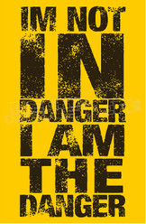 I'm Not in Danger I am the Danger Decal Sticker
