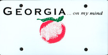 Georgia State Auto Plate