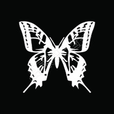 Butterfly Tribal 51 Decal Sticker