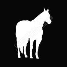 Horse Silhouette Decal Sticker