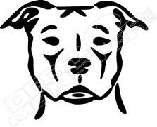Dog 61
