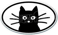 Cat 62