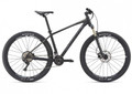 Giant Talon 29er 1