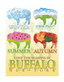Four Seasons,Four Seasons in Buffalo, Buffalo, Buffalo NY,