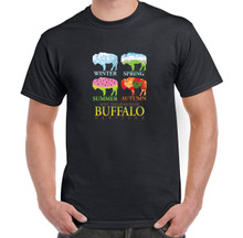 Four Season In BUFFALO,Buffalo NY