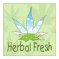 Recreational Marijuana,New York State,Herb,Herbal,Herbal Fresh