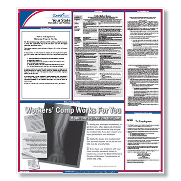 "ComplyRight State Labor Law Poster, Laminated size: 24-1/4"" X 27"".  (Item # STATELL)"