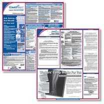 ComplyRight Federal & State Poster Set (Item # EFEDSTATE)