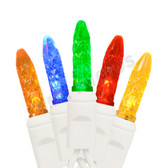 Weather Proof--100 LED M5 MINI LIGHT SET Multi-Color