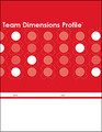 Team Dimensions Profile