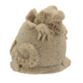 "2"" Sand Baby Alligator ALGS"