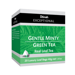 Gentle Minty Green - Luxury Tbags (20's)