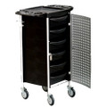 ST-34-001-MS-SP hair trolley