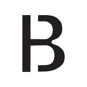 B Block Letter Pet Paint