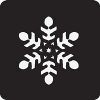 Snow Flake Professional Stencil Insert