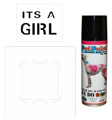 Its a Girl Gender Reveal  & Baby Shower Kit