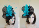 Black with Turquoise feathers
