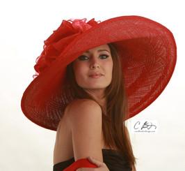 Mela Rosa (wide)