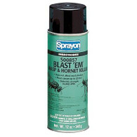 Blast 'Em™ Wasp & Hornet Killer