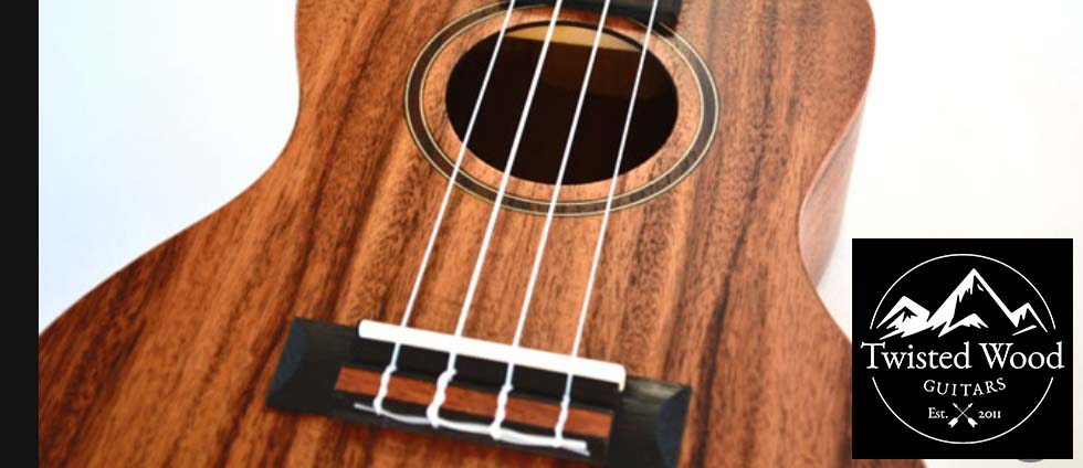 the guitar shop in mississauga ontario canada specializing in electric guitars acoustic guitars. Black Bedroom Furniture Sets. Home Design Ideas