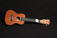 TWISTED WOOD PIONEER CONCERT UKE