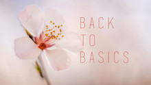 Back To Basics (January 11 - February 8, 2020)