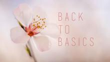 Back To Basics (January 11 - February 8, 2020)