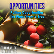 Opportunities Subliminal (Stuart Wilde) MP3