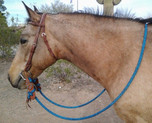 Loop Reins Shown in our Navy/Pacific Blue Blend. Slobber Straps and Headstall Sold Separately.