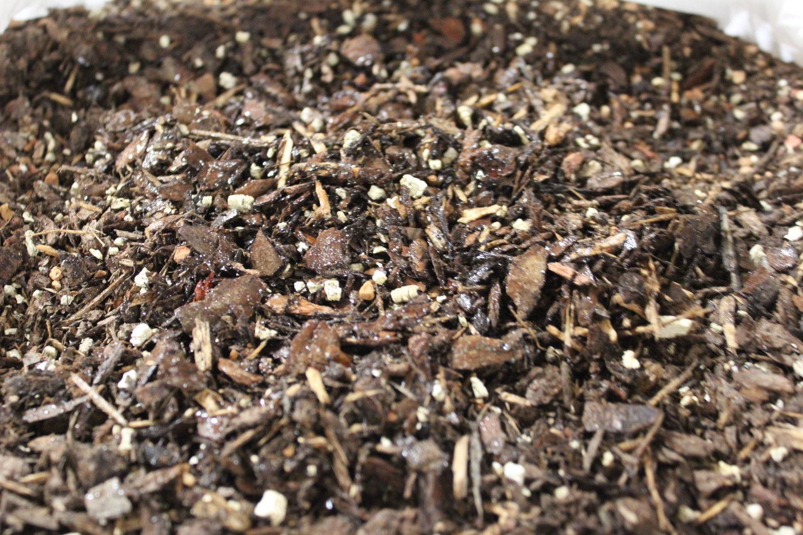 Bonsai soil shelf life bonsai outlet for Soil our life