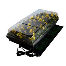 Heated Seed Germination Station Bonsaioutlet