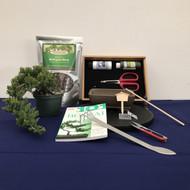 Create Your Own Bonsai Kit - Windswept Juniper (Small)