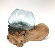 Medium Hand blown Molten Glass Terrarium & Driftwood (tersc)