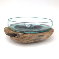 Large Hand blown Molten Glass Terrarium & Driftwood (termc)