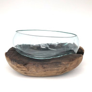 Large Hand blown Molten Glass Terrarium & Driftwood (termd)