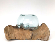 Medium Hand blown Molten Glass Terrarium & Driftwood (tersf)