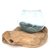 Medium Hand blown Molten Glass Terrarium & Driftwood (tersi)
