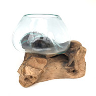 Medium Hand blown Molten Glass Terrarium & Driftwood (tersv)