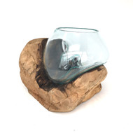 Medium Hand blown Molten Glass Terrarium & Driftwood (tersn)