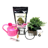 Pink Pre-Bonsai Repotting Kit (Juniper)