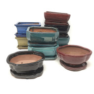 "6"" Glazed Ceramic Bonsai Pots with Fixed Tray (Choose Style)"