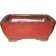"8"" Bonsai Pot (802)"