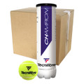 Tecnifibre Champion One - 48 Ball Box