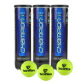 Tecnifibre Champion One Tennis Balls - 12 Balls