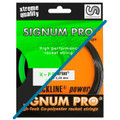 *Hybrid* Signum Pro X-perience / Hyperion 16L 12m