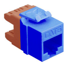 MODULE, CAT 6, HD, BLUE