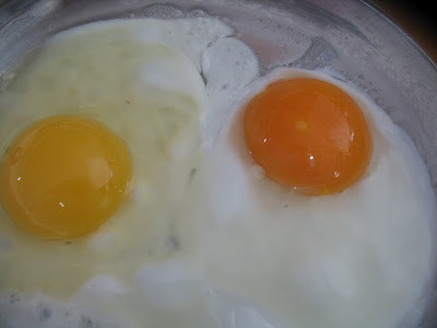 Yolks... note the deep orange of the Pastured egg vs. the pale yellow of industrial.