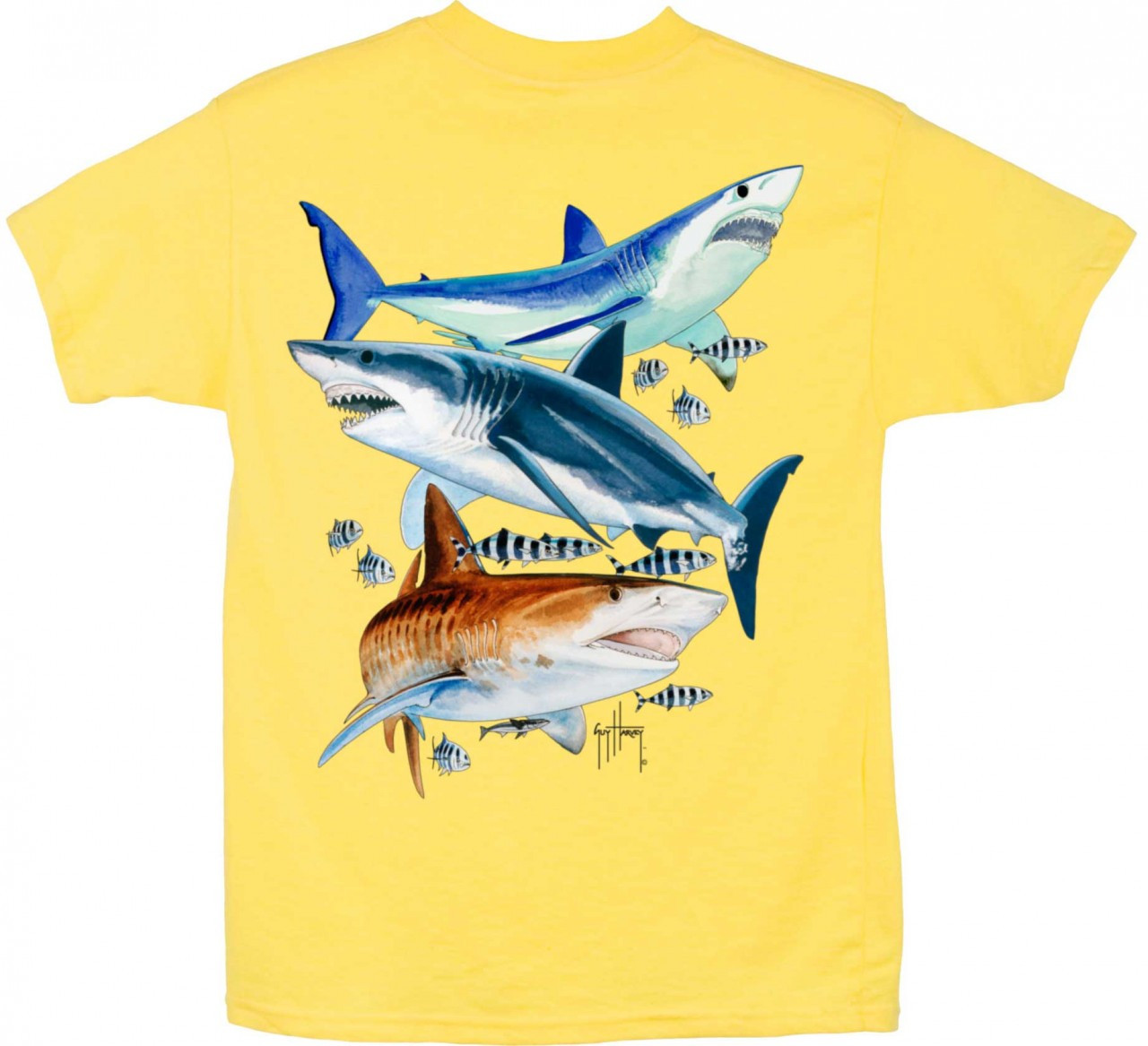 7658e741 Guy Harvey 3 Sharks Boys Tee Shirt in Yellow, Royal Blue, Red or Lime.  $15.00. See 4 more pictures
